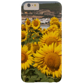 Europe, Spain, Andalusia, Cadiz Province Barely There iPhone 6 Plus Case