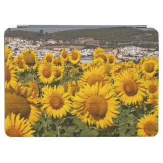 Europe, Spain, Andalusia, Cadiz Province iPad Air Cover