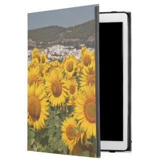 "Europe, Spain, Andalusia, Cadiz Province iPad Pro 12.9"" Case"