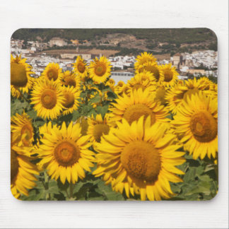 Europe, Spain, Andalusia, Cadiz Province Mouse Mat
