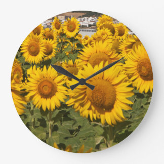 Europe, Spain, Andalusia, Cadiz Province Wallclock
