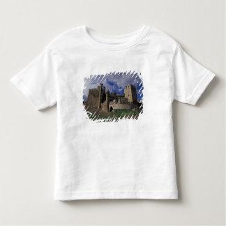 Europe, Spain, Ponferrada, Leon. Templer Toddler T-Shirt