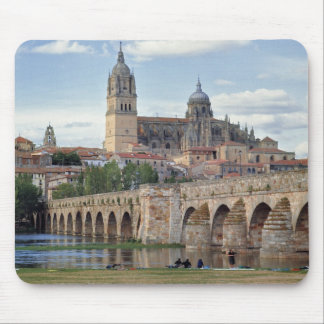 Europe, Spain, Salamanca. The Roman bridge over Mouse Mat