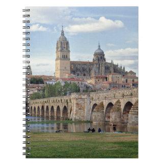 Europe, Spain, Salamanca. The Roman bridge over Notebooks