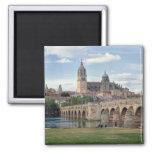 Europe, Spain, Salamanca. The Roman bridge over Square Magnet