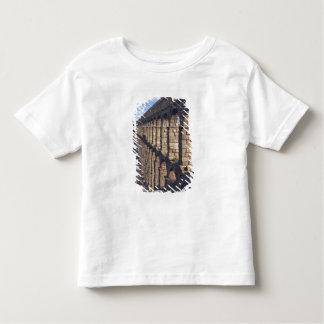 Europe, Spain, Segovia. Late light casts shadows Toddler T-Shirt