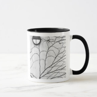 Europe, Switzerland, Lucerne. Ivy pattern on Mug
