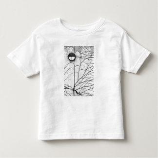 Europe, Switzerland, Lucerne. Ivy pattern on Toddler T-Shirt