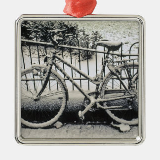 Europe, The Netherlands, Amsterdam. A Christmas Ornament