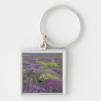 Europe, Turkey, Cappadocia. Rural landscape 3 Key Ring