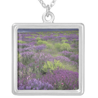 Europe, Turkey, Cappadocia. Rural landscape 3 Silver Plated Necklace