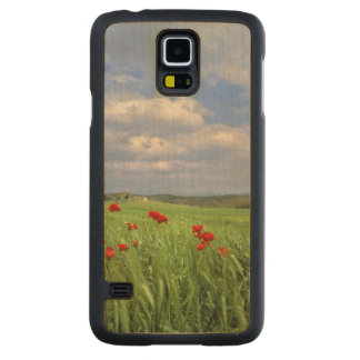 Europe, Tuscany, Poggiolo. Red poppies sway Maple Galaxy S5 Slim Case