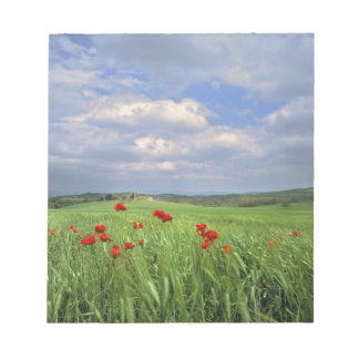 Europe, Tuscany, Poggiolo. Red poppies sway Notepad