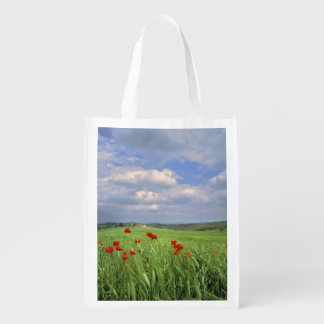 Europe, Tuscany, Poggiolo. Red poppies sway Reusable Grocery Bag
