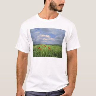 Europe, Tuscany, Poggiolo. Red poppies sway T-Shirt