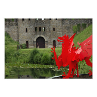 Europe, Wales, Cardiff. Cardiff Castle. Welsh Art Photo