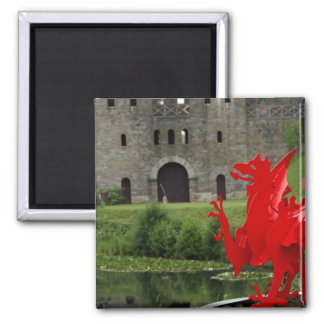 Europe, Wales, Cardiff. Cardiff Castle. Welsh Square Magnet