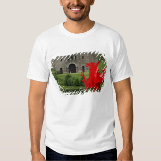 Europe, Wales, Cardiff. Cardiff Castle. Welsh Tees