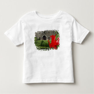Europe, Wales, Cardiff. Cardiff Castle. Welsh Toddler T-Shirt
