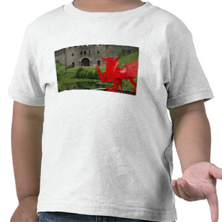 Europe, Wales, Cardiff. Cardiff Castle. Welsh Shirt