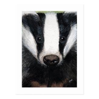 European Badger Portrait Painting Postcard