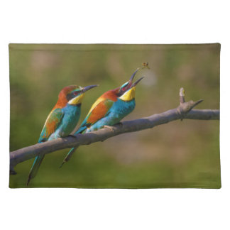 European Bee Eater Birds in Ariège France Placemats