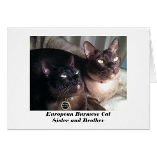 European Burmese Cat Card