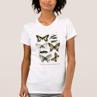 European Butterflies Plate I T-Shirt