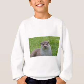 European Otter Sweatshirt