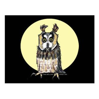 European Owl Postcard