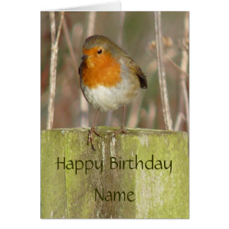 """European Robin-Bird Northumberland England"" Card"