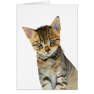 European Shorthair Kitten Watercolor Painting Card