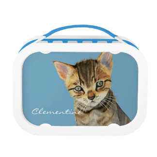 European Shorthair Kitten Watercolor Painting Lunch Box