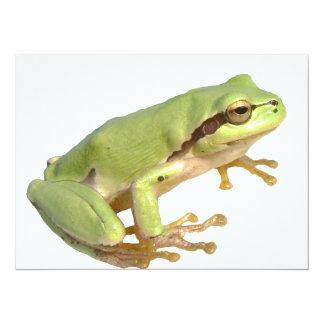European Tree Frog 14 Cm X 19 Cm Invitation Card