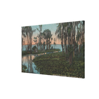 Eustis, Florida - View of Swampy Canal Stretched Canvas Print