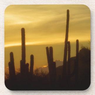Evening at the desert coaster