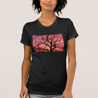 Evening Blush Tree Silhouette Tee Shirt