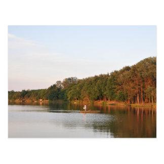 Evening fishing postcard