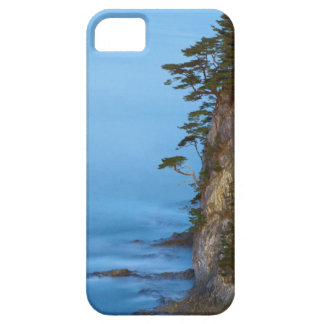 Evening on the Pacific Ocean. Rikuchu Kaigen Case For The iPhone 5