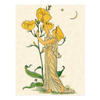 Evening Primrose by Walter Crane, 1889 Postcard