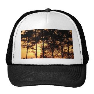 evening-sky mesh hats