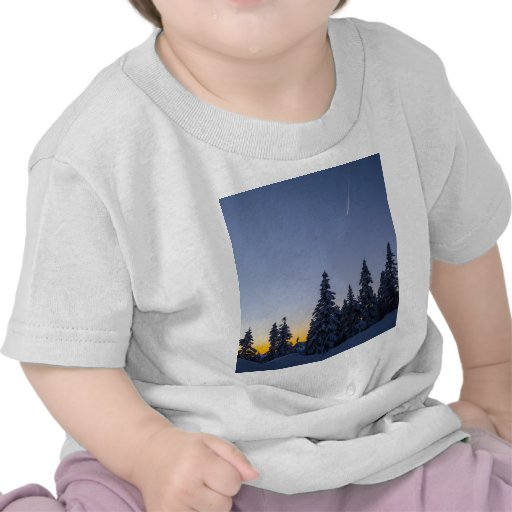 Evening Snowscape Tshirts