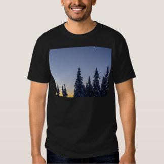 Evening Snowscape Tshirts