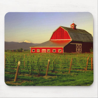 Evening sun on a barn in Washington's Skagit Mouse Mat