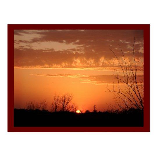 Evening Sun Postcard