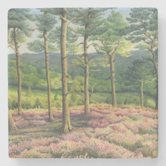 Evening Sun, Surrey Hills Pines in Pastel Stone Coaster