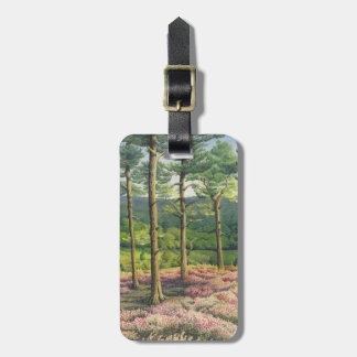 Evening Sun, Surrey Hills Pines Luggage Tag