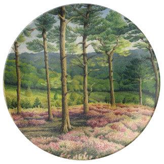 Evening Sun, Surrey Hills Pines Porcelain Plate