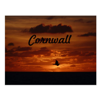 Evening Sunset Postcard