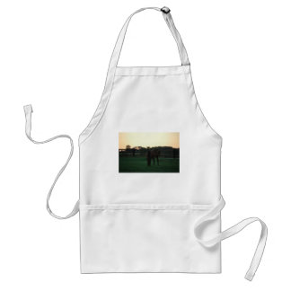 Evening with Grace Standard Apron